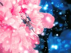 Free Magic Flower With Fairy Royalty Free Stock Images - 26583559