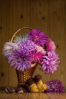 Free Autumn Still Life Royalty Free Stock Image - 26584166