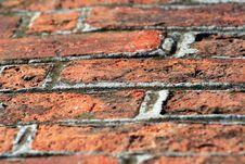 Free Brick Way Royalty Free Stock Photo - 26589235
