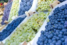 Free Grapes Stock Image - 26598761