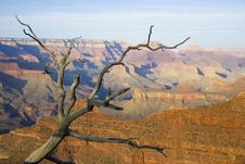 Free Grand Canyon Stock Photography - 2660092