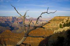 Free Grand Canyon Stock Photos - 2660093