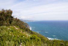 Free Big Sur Coast Royalty Free Stock Image - 2660406
