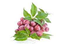 Free Wet Juicy Red Grapes Royalty Free Stock Images - 2661859