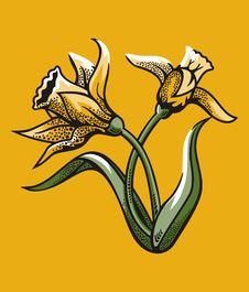 Free Flower Illustration Series Stock Image - 2669491