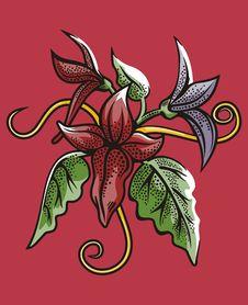 Free Flower Illustration Series Stock Image - 2669521