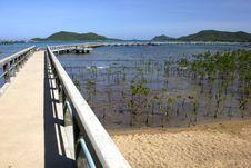 Free Bridge View. Stock Images - 26610924