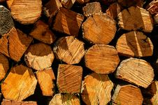 Free Pile Of Chopped Fire Wood Stock Photos - 26612383