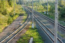 Free Railroad Tracks In Forest Horizontal View Stock Photos - 26616503