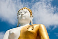 Free A Biggest Buddha In Thailand Stock Image - 26629671
