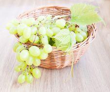 Free Grape Cluster Stock Photos - 26621933
