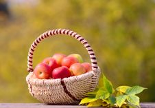 Free Apples In The Basket Royalty Free Stock Image - 26625736