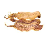 Free Grilled Sea Food Dried Squid, The Most Favor Snack Stock Image - 26628041