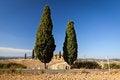 Free Tuscan Countryside Near Pienza, Tuscany, Italy Stock Photography - 26630572
