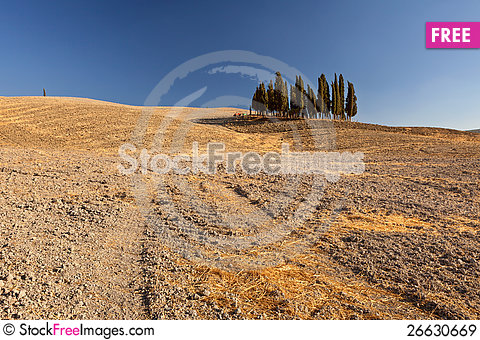 Free Tuscan Countryside, Tuscany, Italy Royalty Free Stock Images - 26630669