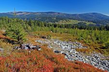 Landscape In Mountains Krkonose, Czech Republic Stock Image