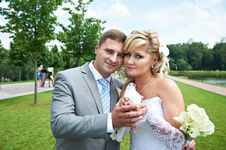 Bride And Groom With Pigeon On Wedding Walk Stock Images