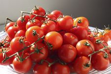 Free Tomatoes On Vine Stock Photos - 26640993