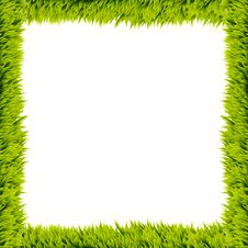 Green Grass Frame Royalty Free Stock Image