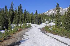 Free Canadian Rockies. Royalty Free Stock Photos - 26646628