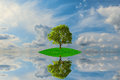 Free Green Island With Lonely Tree Stock Photos - 26657993