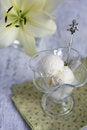 Free Vanilla Ice Cream Stock Photo - 26658550