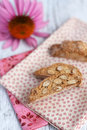Free Biscotti Royalty Free Stock Images - 26658569