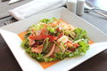 Free Spicy Seafood Salad Stock Images - 26668944