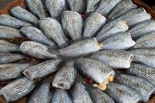 Drying Snakeskin Gourami Fishs Royalty Free Stock Images