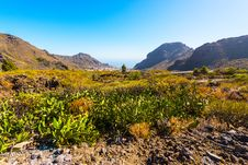 Tenerife Landscape In A Valley Stock Photo