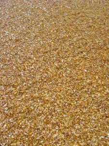 Free Background From Sand And Cockleshells Royalty Free Stock Photo - 26671055