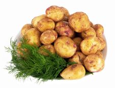 Free Potatoes Stock Image - 26682201