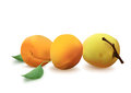 Free Apricots Stock Images - 26694704