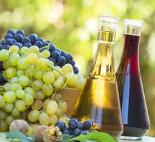 Free Red And White Wine And Grapes Royalty Free Stock Image - 26691266