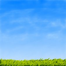 Free Green Grass And Blue Sky Royalty Free Stock Photos - 26697358