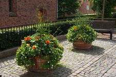 Free Street With Flower Pots Royalty Free Stock Images - 26699819
