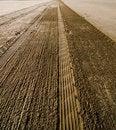 Free Sand Tracks Stock Image - 2670271