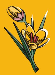 Free Flower Illustration Series Royalty Free Stock Images - 2670249