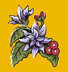 Free Flower Illustration Series Stock Photo - 2670270