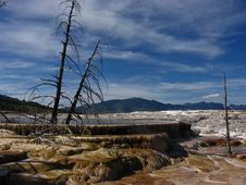 Mammoth Hot Spring Stock Image