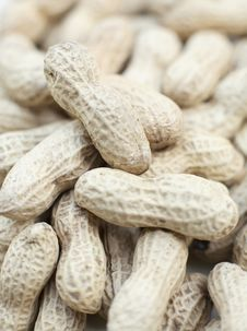 Free Monkey Nuts Royalty Free Stock Image - 2671556