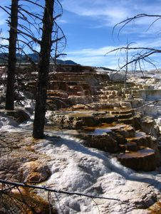 Free Mammoth Hot Spring Stock Images - 2671574