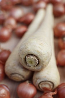 Free Parsnips And Shallots Stock Photos - 2672103