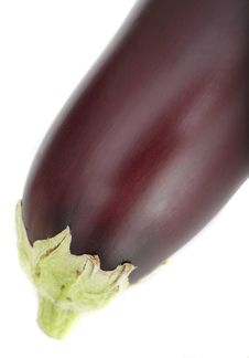 Free Organic Aubergine Stock Photo - 2672180