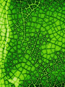 Free Cracked Glass Texture In Green Royalty Free Stock Photography - 2672807