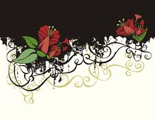 Free Floral Background Series Royalty Free Stock Photo - 2673995