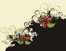 Free Floral Background Series Stock Photography - 2674102