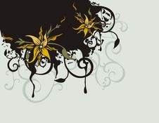 Free Floral Background Series Royalty Free Stock Photography - 2674107