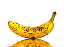 Free Ripe Banana Stock Photography - 2674192