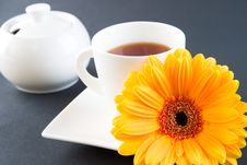 Free A Cup Of Tea With A Gerbera Stock Photography - 2677282